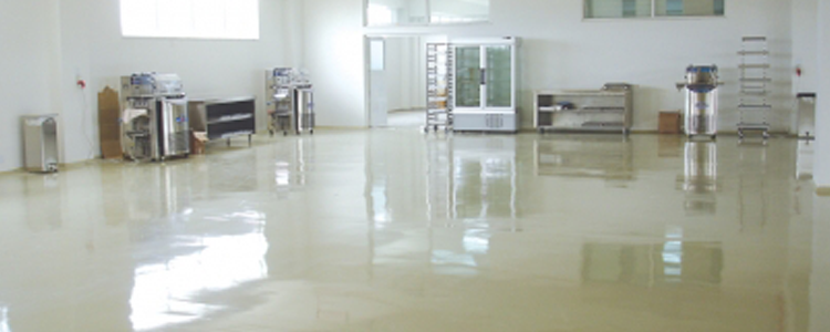 Self-Levelling Production Plants Flooring Systems