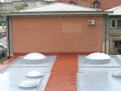 Solid Color Decorative Waterproofing